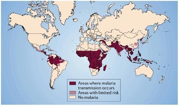 Малярия: конец истории? - 1