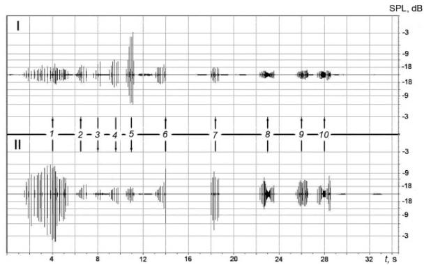 Анализ акустических сигналов дельфинов-афалин показал возможное наличие у них развитой разговорной речи - 3