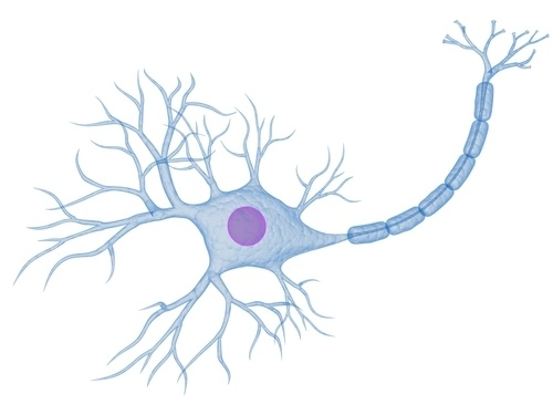 Симулятор нервной системы. Часть 3. Ассоциативный нейроэлемент - 5