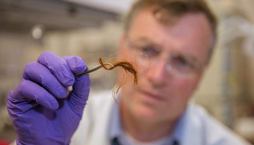 Протеом вместо ДНК. Новый способ идентификации личности по волосу - 1