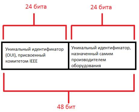 Основы компьютерных сетей. Тема №3. Протоколы нижних уровней (транспортного, сетевого и канального) - 9