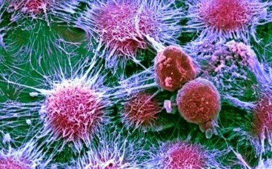 Специально разработанные чипы будут искать раковые клетки