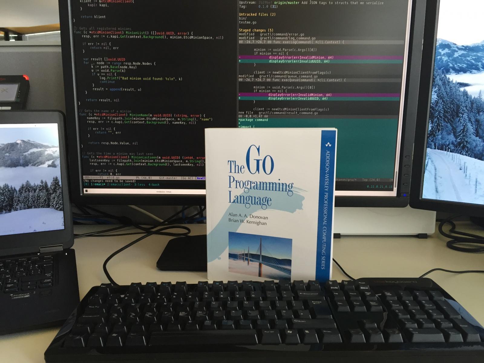 Хобби-проект польского разработчика — усовершенствованная и дополненная версия языка Go - 1