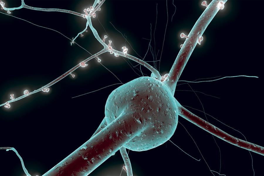 Принцип работы «забывающего мемристора» похож на принцип работы нейрона мозга - 1