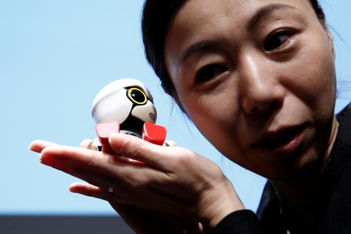 На японском рынке Kirobo Mini появится в будущем году