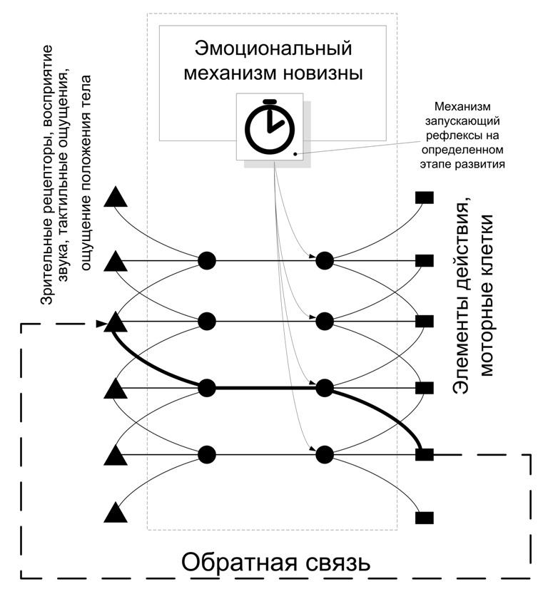 Структура и стартовые настройки мозга - 19
