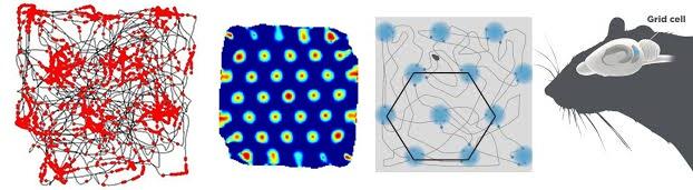 Структура и стартовые настройки мозга - 6
