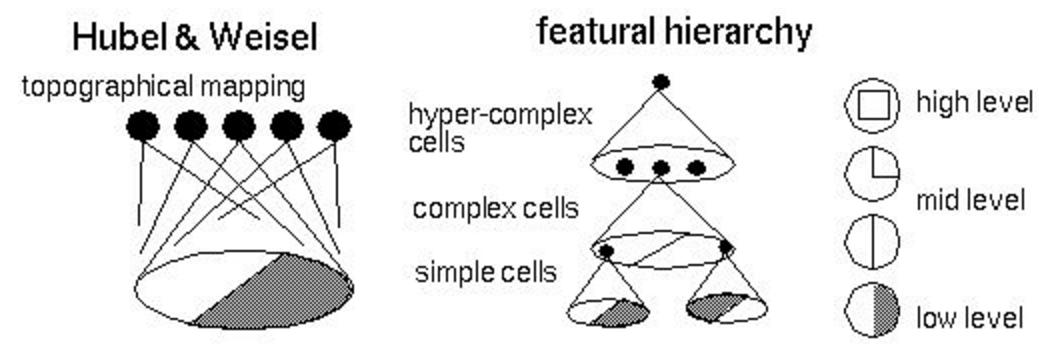 Обзор топологий глубоких сверточных нейронных сетей - 4