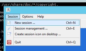 Методы удаленного доступа к Linux GUI - 9
