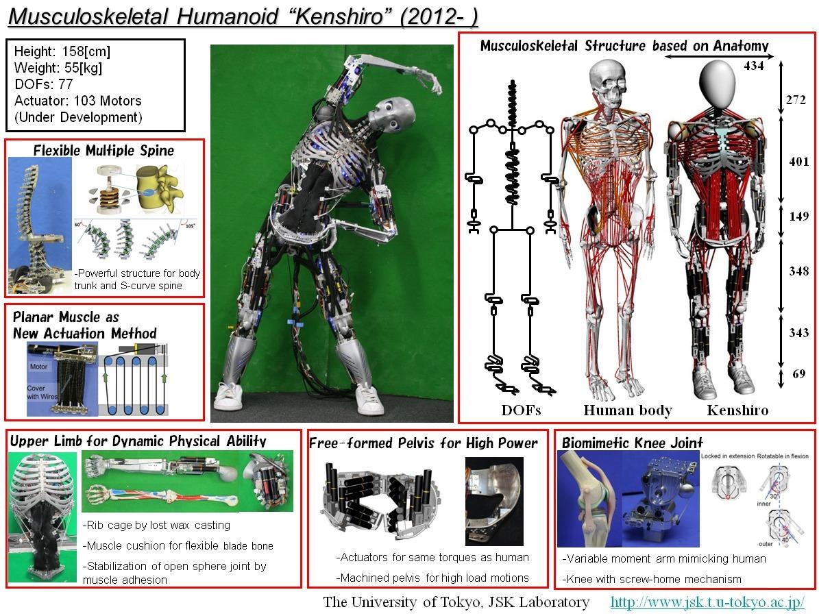 Японский робот Kengoro «потеет» при физической нагрузке - 5