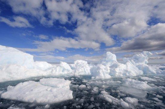 Арктические льды никуда не исчезают