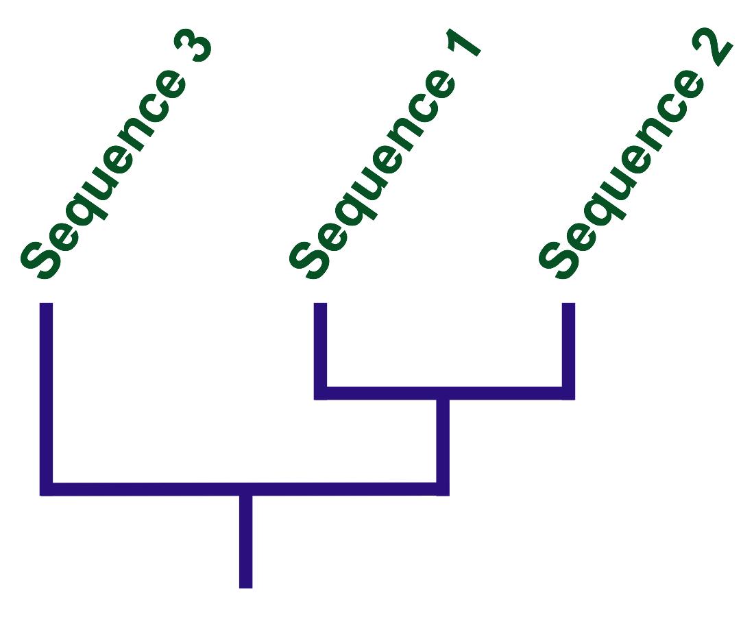 Как мы воссоздаём наше эволюционное прошлое - 5