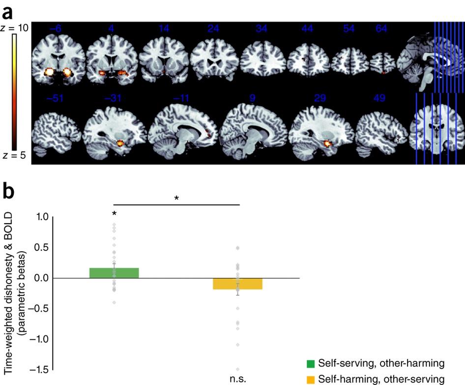 Ученые выяснили, как человеческий мозг адаптируется ко лжи - 2
