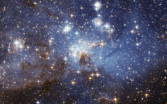 Ученые считают, что разумные существа могут жить на звезде Табби