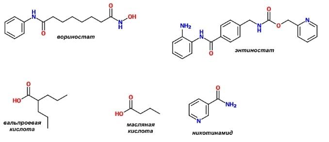 Фармакологическая модуляция памяти. Часть 2 - 10