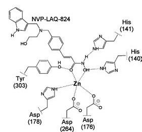 Фармакологическая модуляция памяти. Часть 2 - 9
