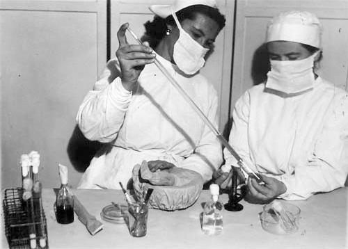 История мировых эпидемий, часть 1 - 6