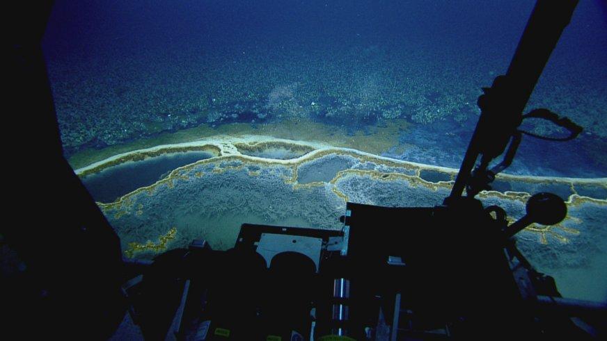 На дне Мексиканского залива нашли ядовитое озеро - 3