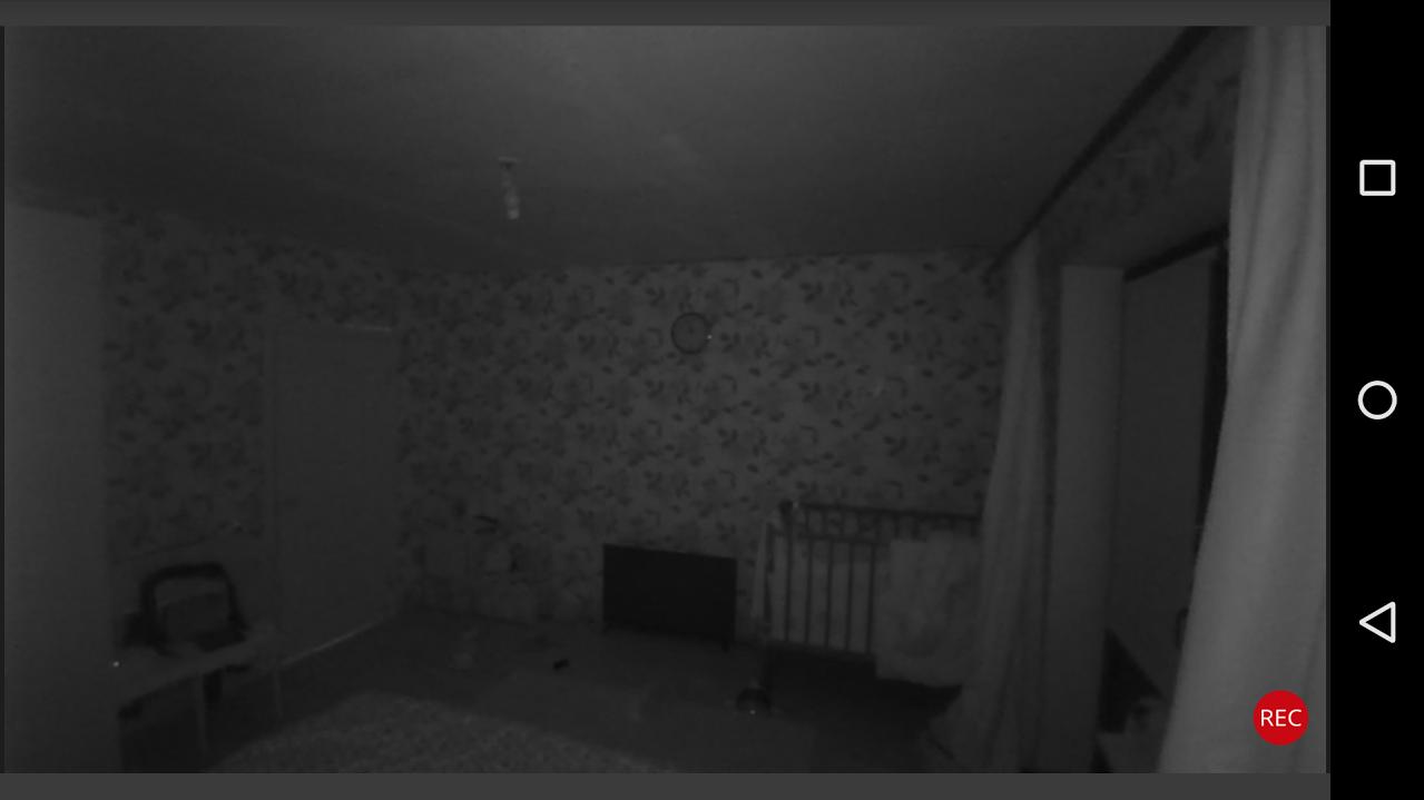 HD-камера наблюдения для дома: FlirFX - 13
