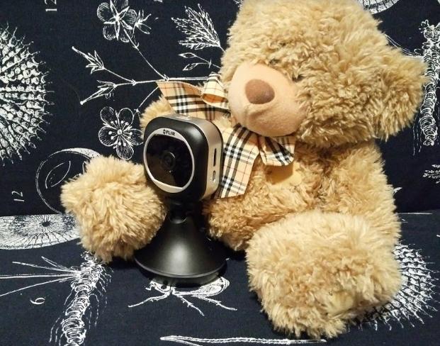 HD-камера наблюдения для дома: FlirFX - 1