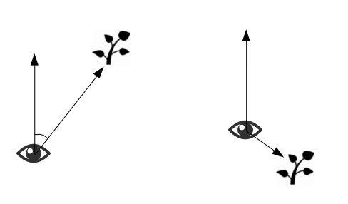 Процедурная растительность на OpenGL и GLSL - 5