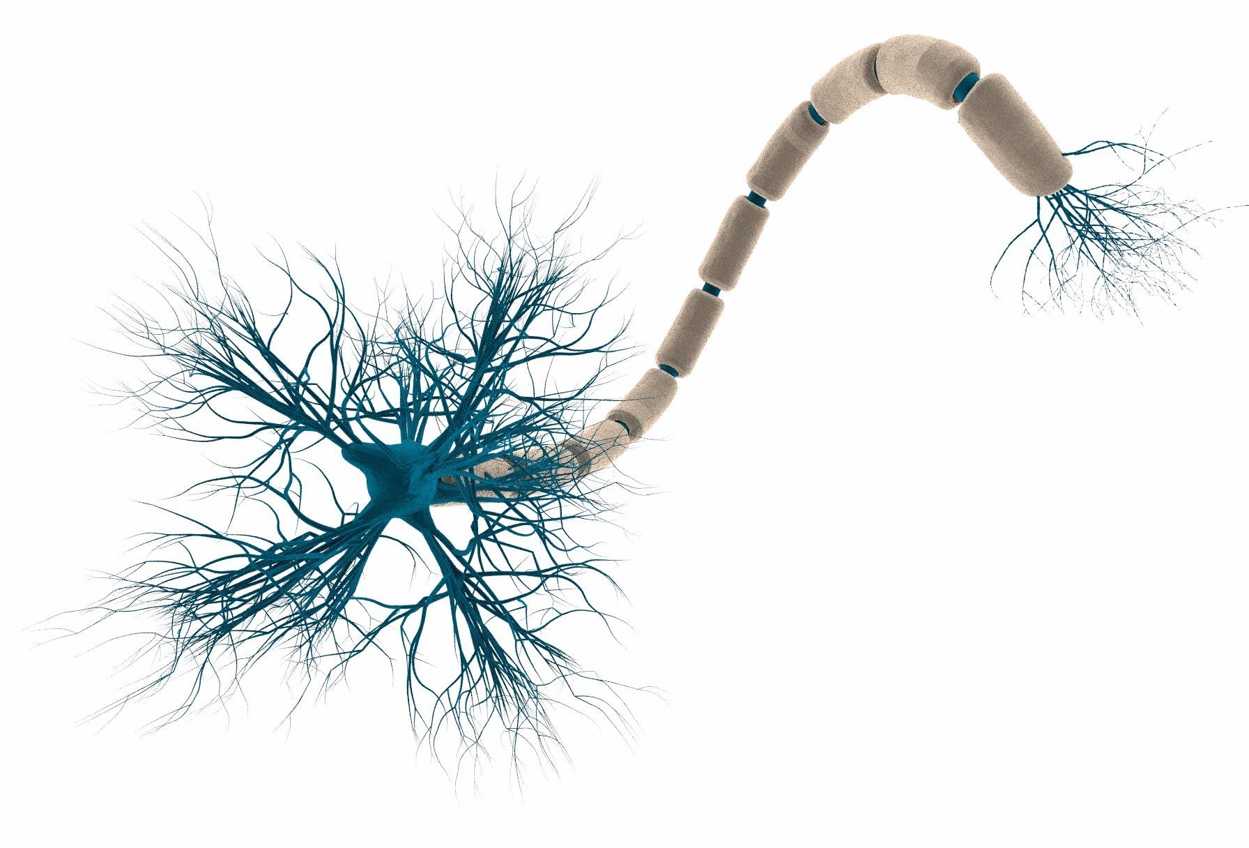 Исследователи из MIT научили нейронные сети аргументировать свои решения - 2