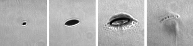 Ведущие производители чипов присматриваются к фотолитографии в глубоком ультрафиолете - 8