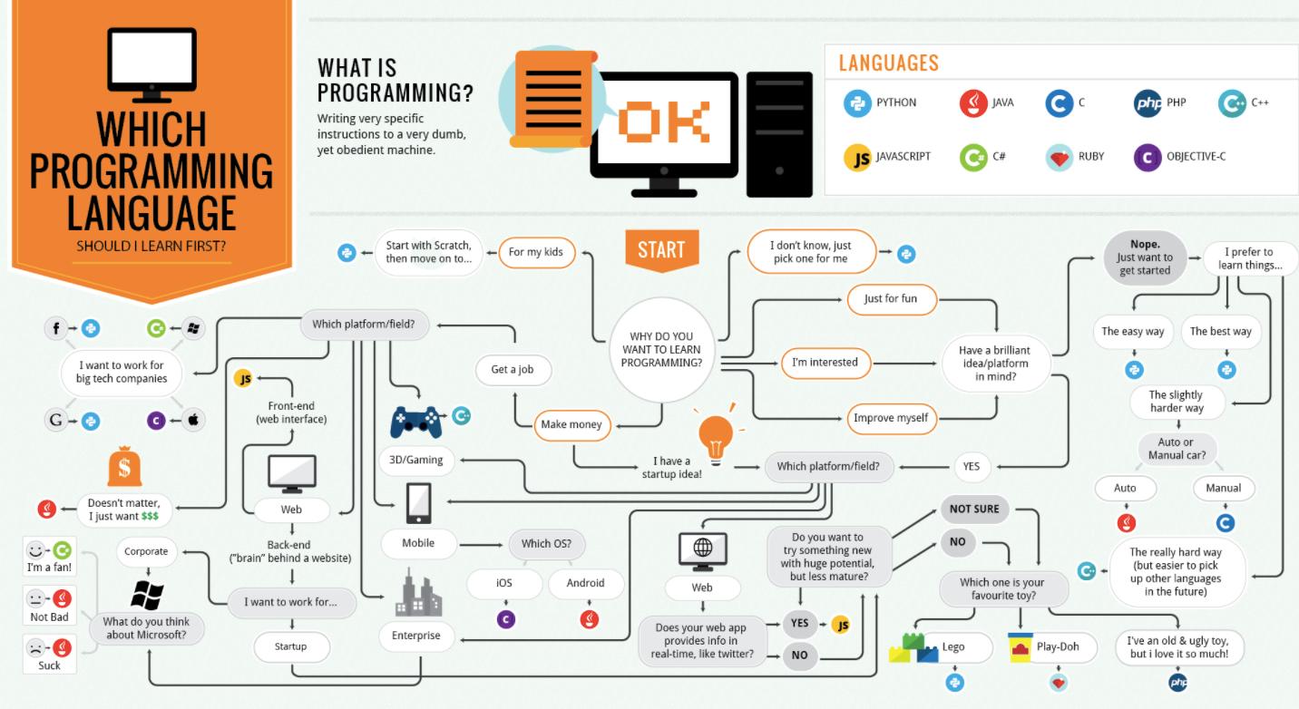 Какой язык программирования стоит выучить первым? (ʇdıɹɔsɐʌɐɾ: ɯǝʚɯо ņıqнqvиʚɐdu) - 2