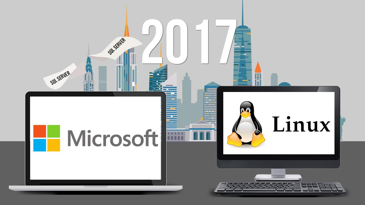 Microsoft SQL Server для Linux: мост между мирами Linux и Windows - 1
