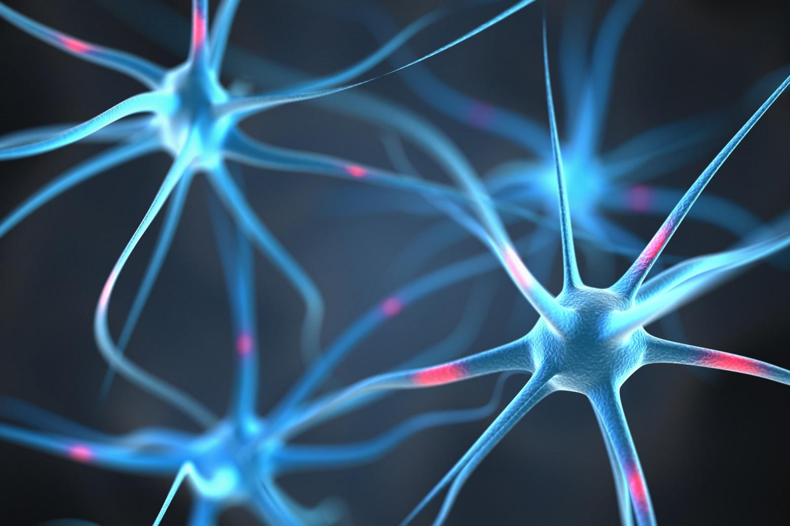 Исследователи управляют поведением мыши с помощью беспроводного нейроимпланта - 1