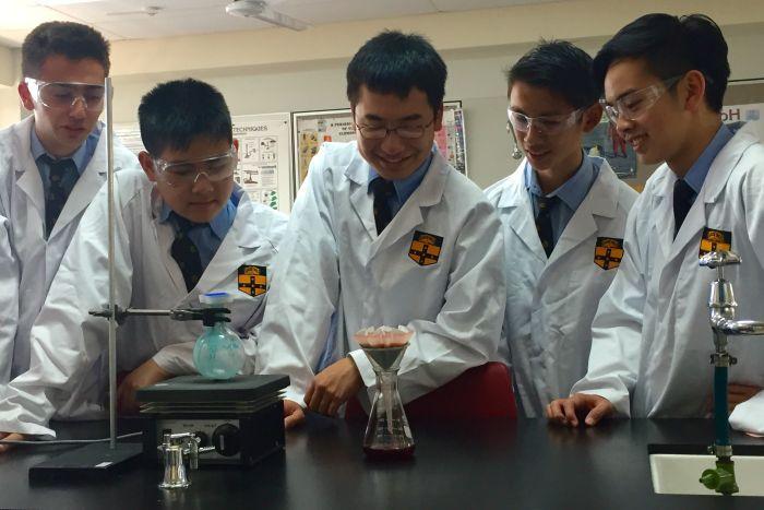 Австралийские школьники воссоздали препарат, на который Мартин Шкрели поднял цену в 56 раз - 1