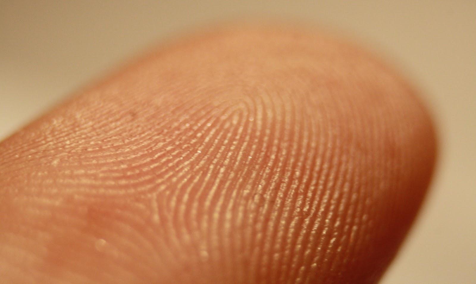 Как мы стали беречь наши пальцы чуточку больше - 3