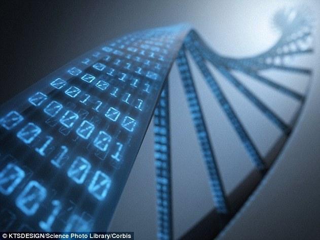 Как создать торгового робота с помощью генетического программирования - 1