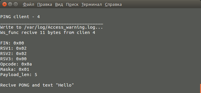 WebSocket-сервер, лайт-версия - 8
