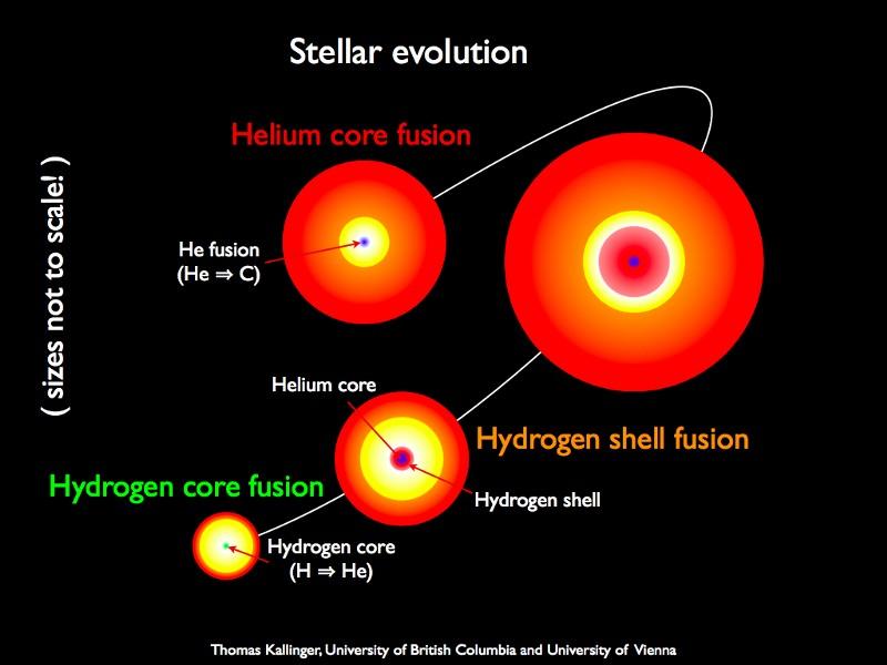 Десять самых ярких звёзд на небе - 6