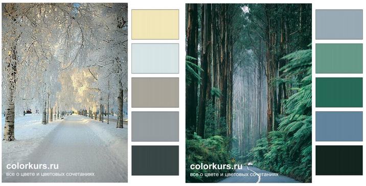 Манипуляции пользователями сайта с помощью цветов - 5