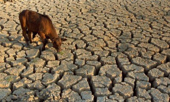 Землю, возможно, ожидает сильная засуха