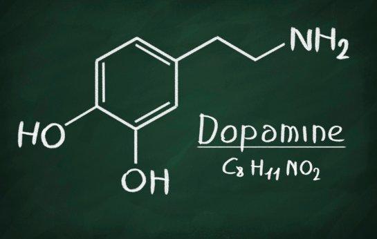 При малом количестве дофамина похудеть невозможно