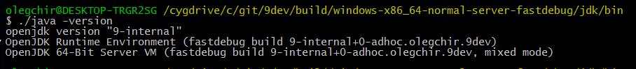 Пошаговая инструкция: сборка JDK9 из исходников на Windows 10 - 14