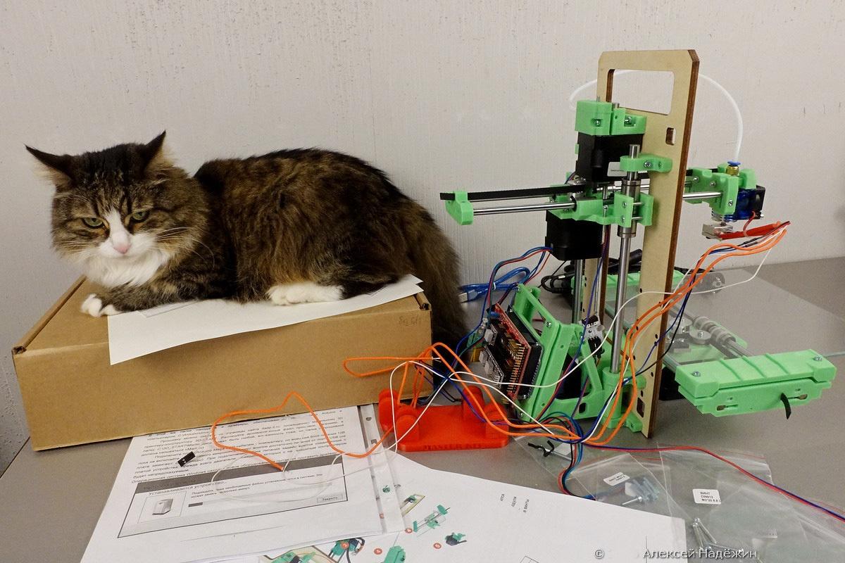 Модульный 3D-принтер «3D-Старт» как источник интереса 3D-кошки - 6