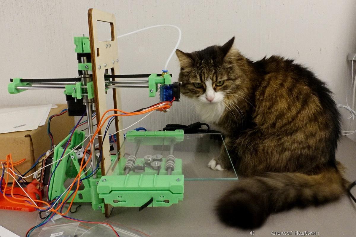 Модульный 3D-принтер «3D-Старт» как источник интереса 3D-кошки - 1