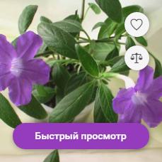 Верстка интернет-магазина: список товаров - 5