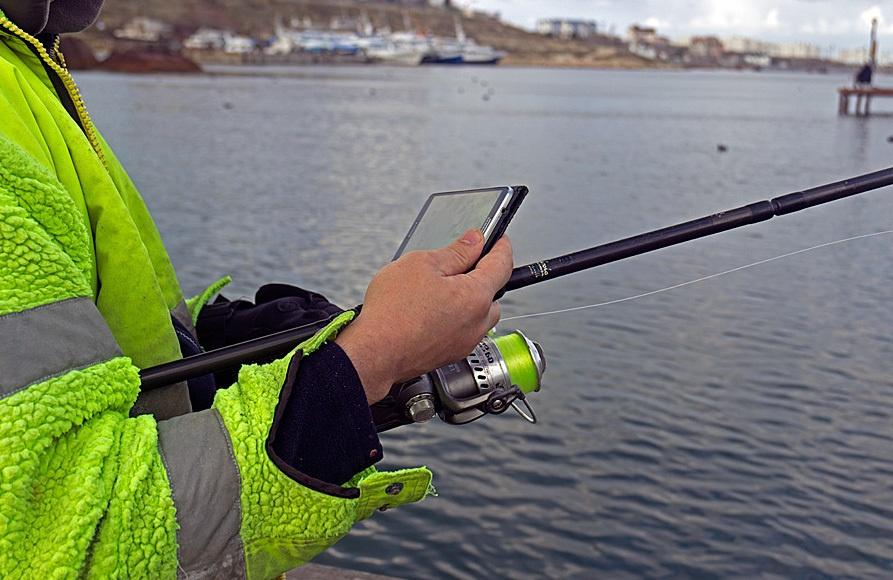 Гаджет для ловли рыбы из мест, где она реально есть - 10