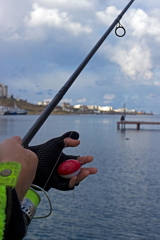 Гаджет для ловли рыбы из мест, где она реально есть - 7