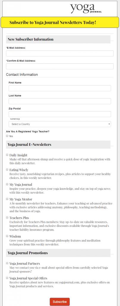 Форма подписки: как эффективно собрать базу адресов - 18