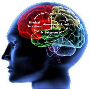 Как мозг решает, что важно, а что нет - 1