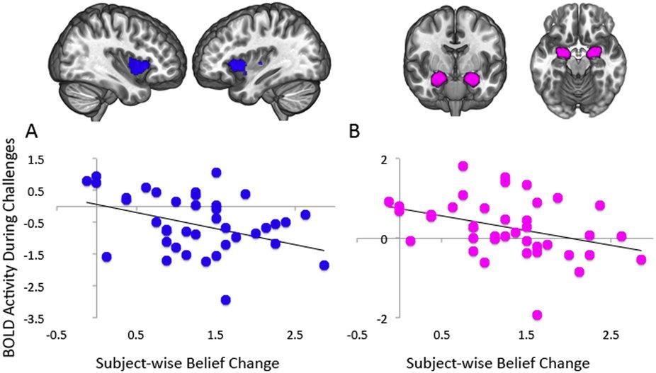 Иллюзии мозга. Эффект обратного действия с точки зрения нейробиологии - 1