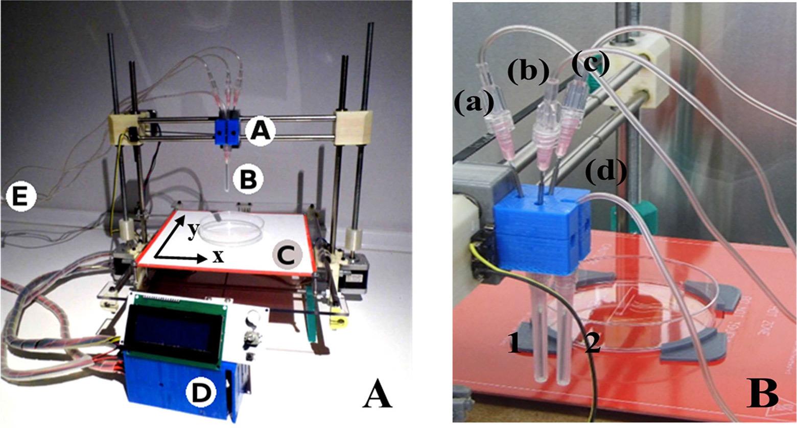 3D-принтер на Arduino печатает функциональную человеческую кожу - 2