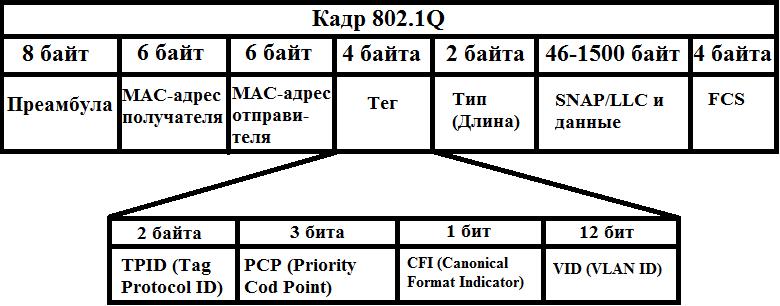 Основы компьютерных сетей. Тема №6. Понятие VLAN, Trunk и протоколы VTP и DTP - 10