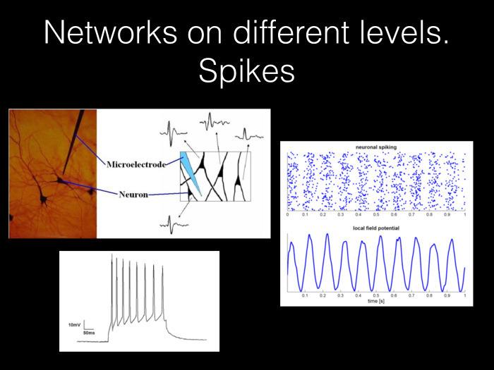 Исследование связности в мозге на основе электрофизиологических данных. Лекция в Яндексе - 3